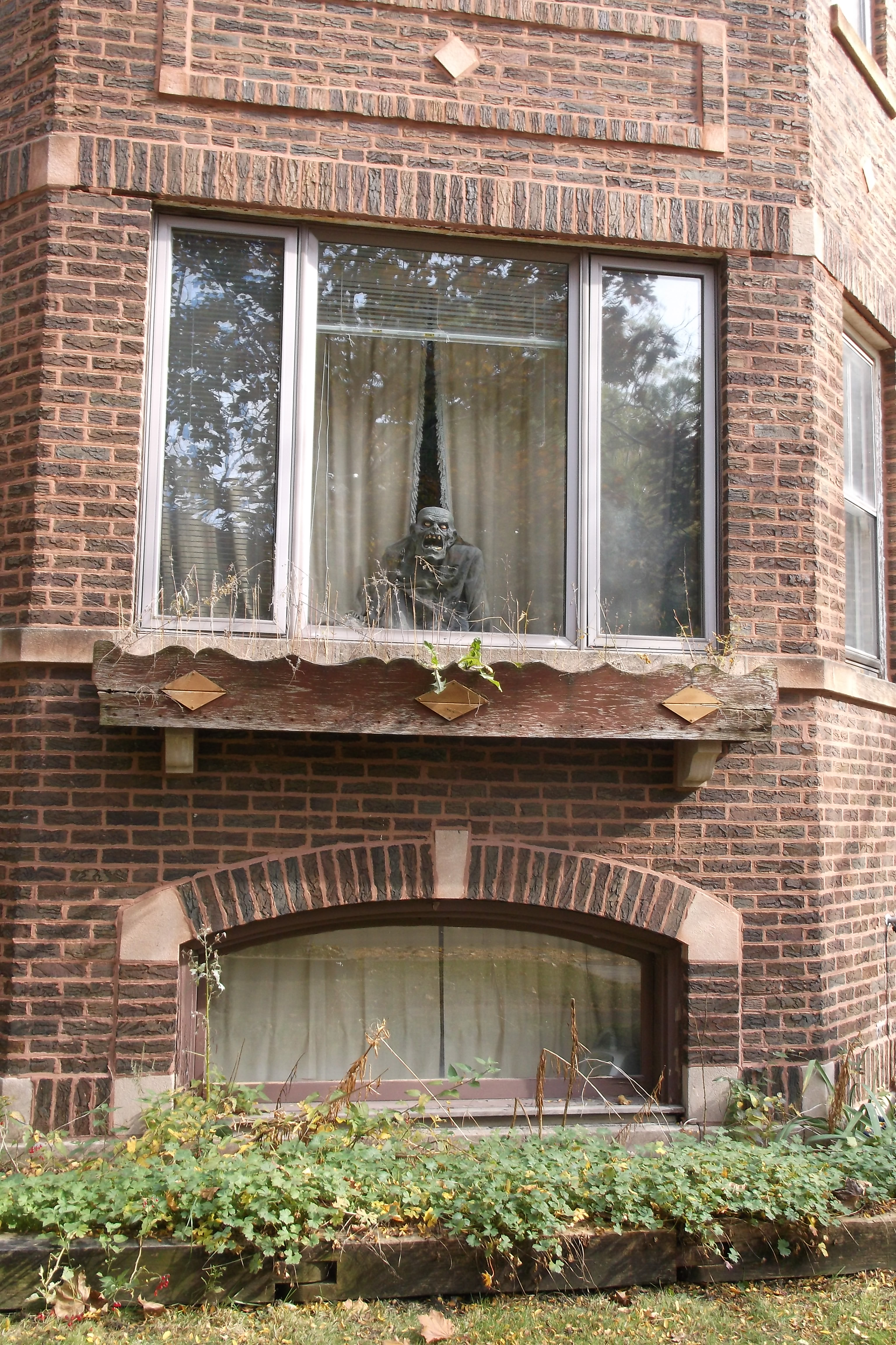 frankensteinwindowfrancisco.jpg