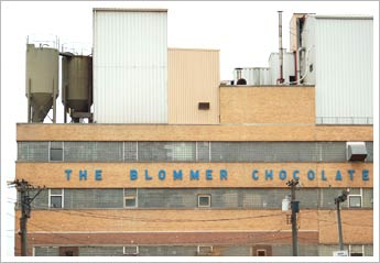 blommer_photo.jpg