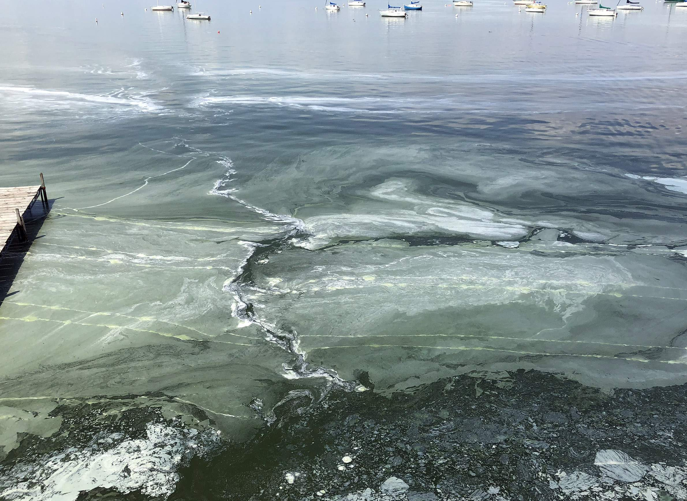 science-environment-lakes-sediments-phosphorus-algae-lakemendota.jpg